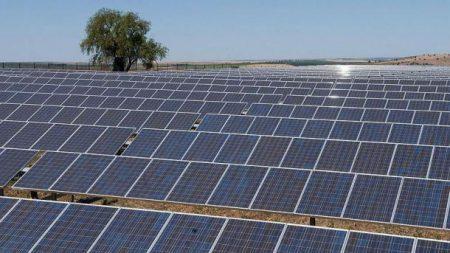 Resultado de imagem para usina solar drogaria araujo